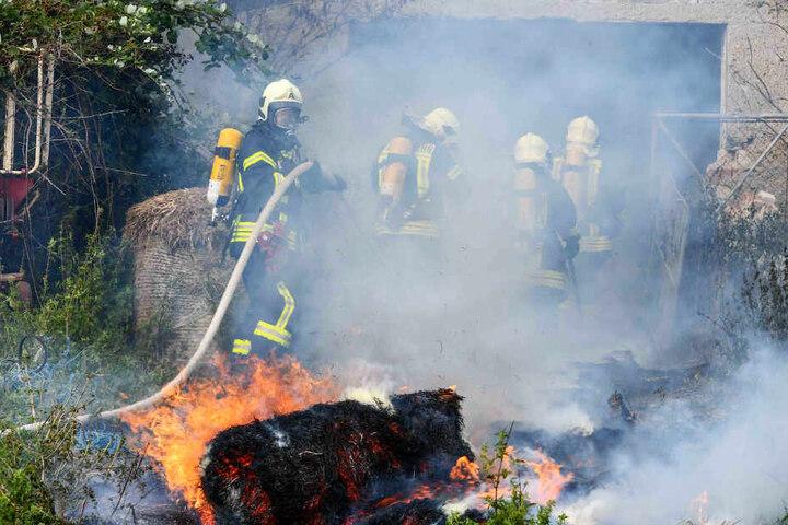 In einem landwirtschaftlichen Betrieb waren Strohballen in Brand geraten.