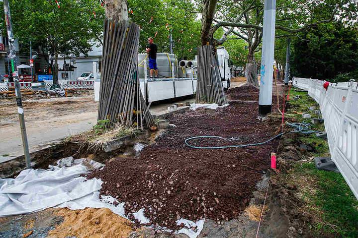 Die Bäume entlang der Bautzner Straße werden während der Maßnahme geschützt und bewässert.