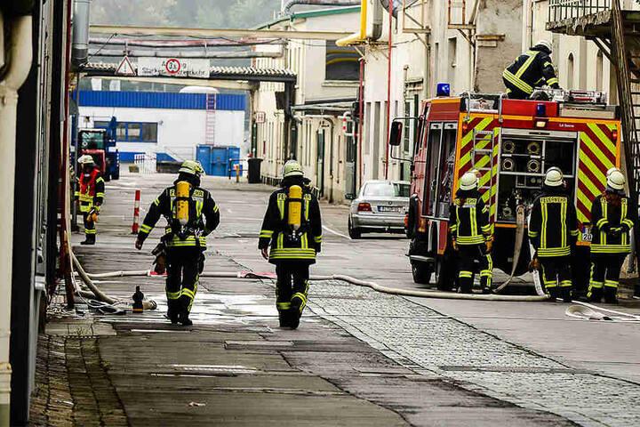 Die Feuerwehr benötigt jede Hand, um die Flammen in den Griff zu bekommen.