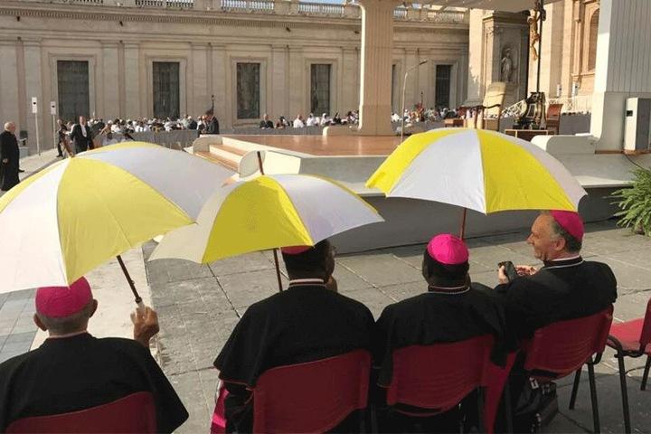 Auch Hilberts Besuch vor zwei Jahren beim Papst sorgte für Kritik.