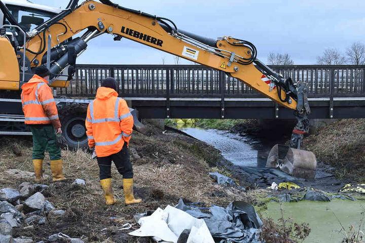 Um die Tiere zu schützen, wurde am Dienstag ein neuer Otter-Laufsteg - genannt Berme - an der Bundesstraße B96 bei Groß Machnow übergeben.