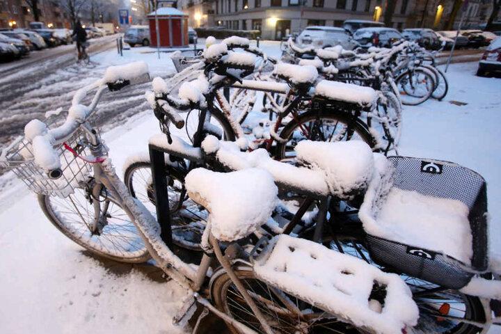 Im März lag in Hamburg noch Schnee. In der kommenden Woche könnte es wieder so weit sein.