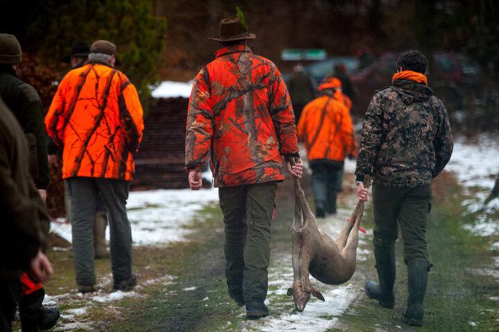 Die Jagd muss in den betroffenen Regionen verstärkt werden, um den Wald zu schützen (Archivbild)