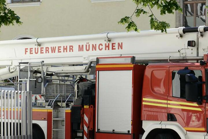 Die Feuerwehr München war am Dienstag mit einem speziellen Einsatz im Olympiapark beschäftigt.