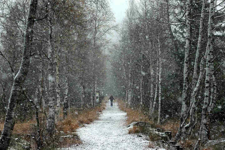 Ein Mann läuft im Schneetreiben durch das Hochmoor Kematsriedmoos.