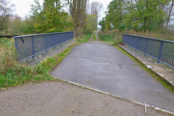 So sah die Brücke noch vor dem Diebstahl aus. Die beiden Geländer fehlen mittlerweile.