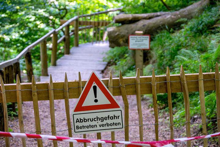 Nach Kreideabbrüchen gesperrte Wanderwege am Königsstuhl im Nationalpark Jasmund auf der Ostseeinsel Rügen.