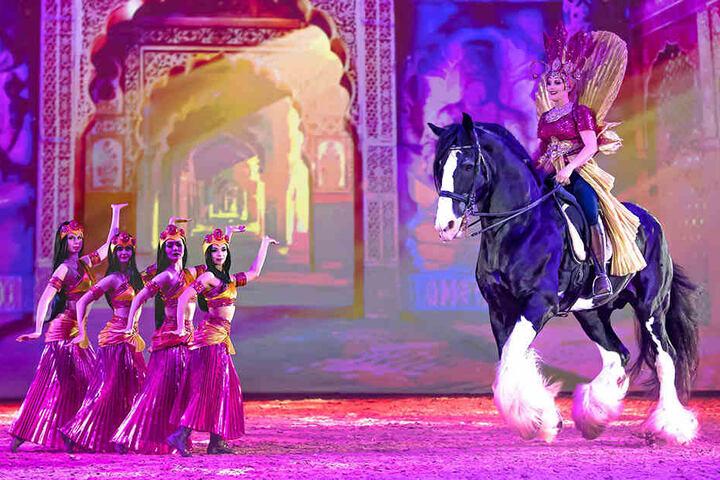 Imposante Größe: Fast zwei Meter große Shire-Horse-Pferde sind ebenfalls Teil der beiden Shows in Leipzig.