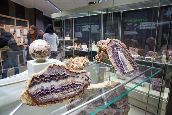 Rund 300 Exponate des edlen Amethyst-Gesteins zeigt das Naturkundemuseum.
