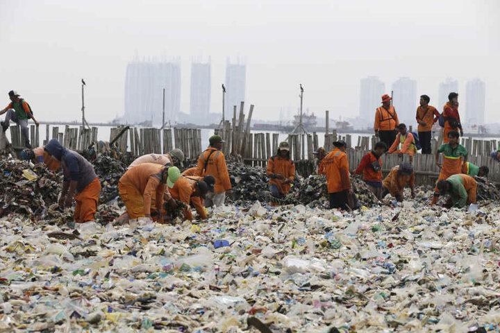 Plastikmüll-Berge in Indonesien. Jetzt soll der Müll dahin zurück wo er herkommt!