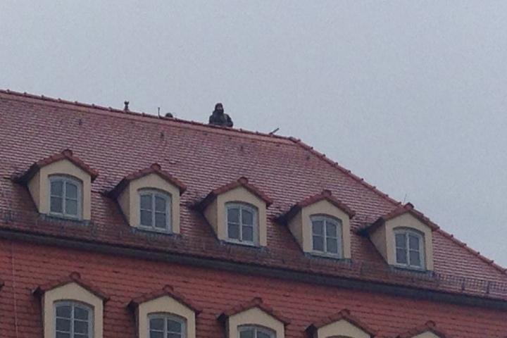 Auch auf dem Steigenberger Hotel sind Scharfschützen postiert.