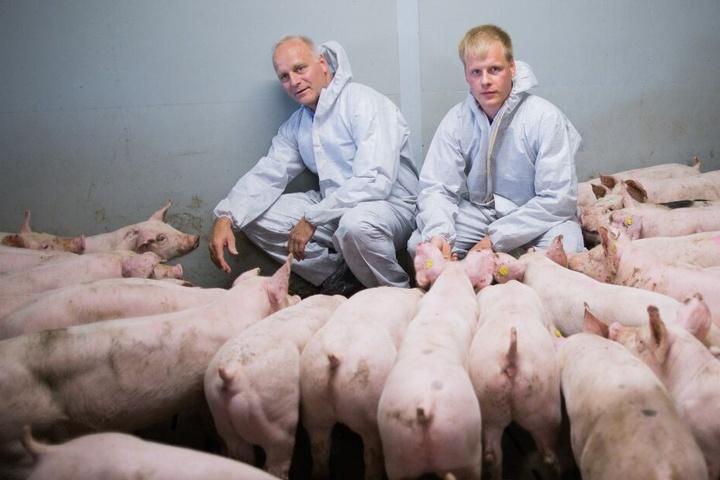 Der Präsident des Westfälisch-Lippischen Landwirtschaftverbandes, Johannes Röring, posiert zusammen mit seinem Sohn, Christian, in dessen Schweinestall.