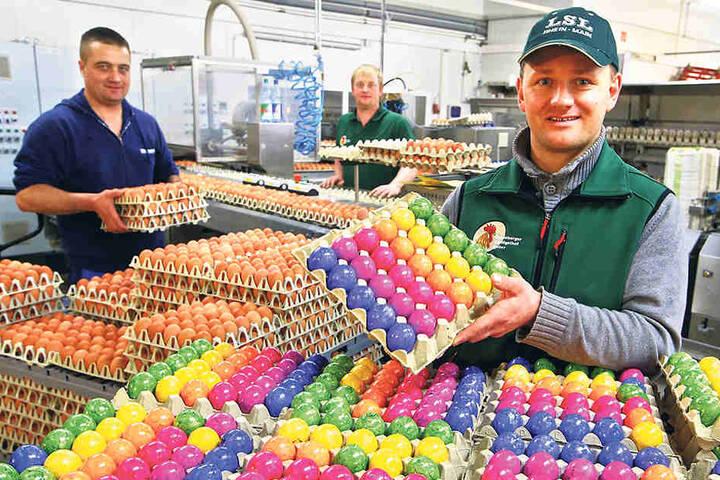 Wer nicht selbst färben möchte, kann die bunten Eier bei Christian Weber (33) auf dem Geflügelhof kaufen.