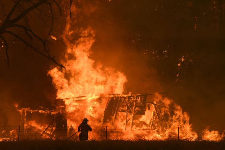 """Ende Dezember 2019: Ein Feuerwehrmann bekämpft die Flammen des """"Gosper Mountain""""-Feuers, die ein Gebäude in Bilpin erreicht haben."""
