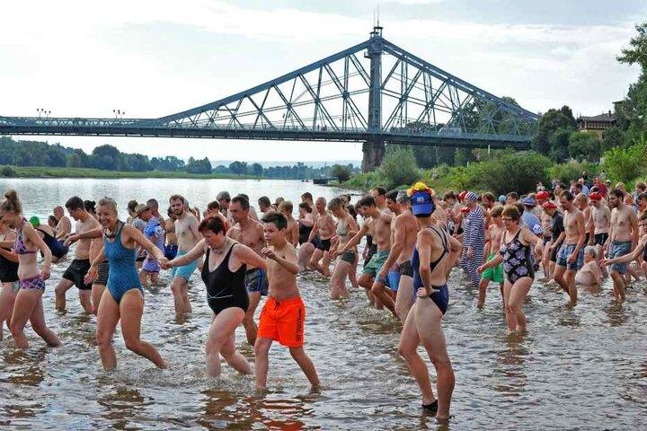 Weit über 1000 Schwimmer werfen sich am Sonntag in die Fluten. Neben OB  Hilbert wollen auch Linke-Bundestagsabgeordnete Katja Kipping (39) und  SPD-Stadtrat Christian Avenarius (58) mitschwimmen.