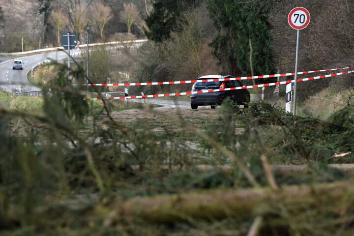 Mehrere entwurzelte Bäume blockierten in Hessen sogar ganze Straßen.