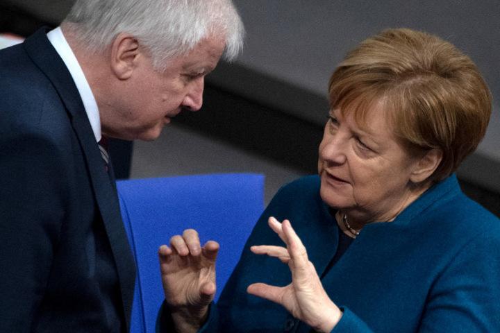 Angela Merkel (r.) und Horst Seehofer (l.) hatten in den letzten Jahren einige Meinungsverschiedenheiten.