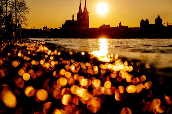 """Köln hatte im vor zwei Wochen den """"Klimanotstand"""" ausgerufen."""