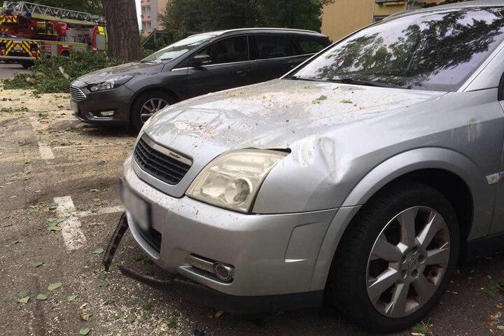 Mehrere Autos wurden von den herabstürzenden Ästen stark beschädigt.