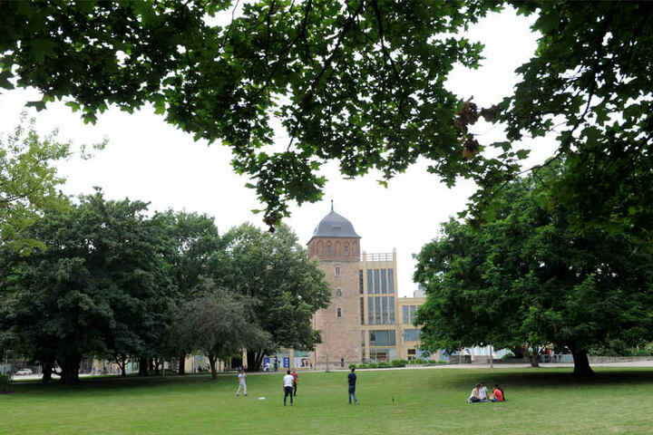 Zum Ende des Jahres will die Stadtverwaltung im Stadthallenpark Bäume und Sträucher entfernen lassen.