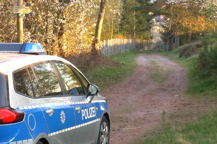 In einem Waldstück im thüringischen Ilm-Kreis wurde der Leichnam entdeckt.