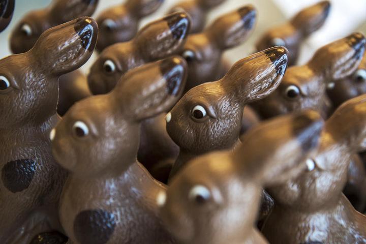 Osterhasen aus Schokolade wird man in Oldisleben auch entdecken können.