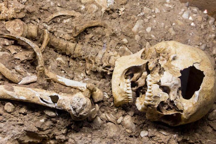 Die Skelettteile stammen von einem Menschen, der die letzten 15 Jahre ums Leben gekommen sei (Symbolfoto).