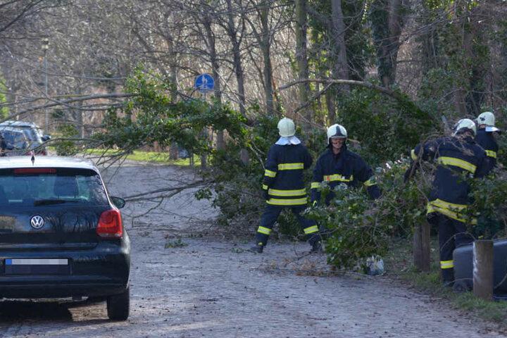 Die Feuerwehr in Erfurt rückte zu insgesamt 227 wetterbedingten Einsätzen aus.