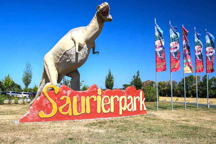 Den Saurierpark gibt es seit Ende der 70er-Jahre. Seitdem ist er kontinuierlich vergrößert worden.
