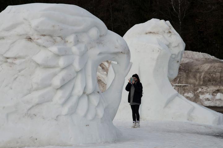 So ein Greifvogel aus Schnee sieht man auch nicht alle Tage.