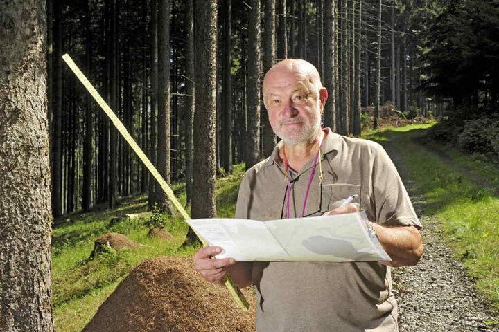Siegmar Bräuer (67) ist einer von sechs Schutzwarten Sachsens, die Ameisenvölker kartieren.