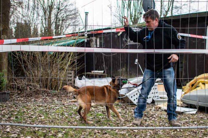 Jörg Siebert steht mit seinem Belgischen Schäferhund Artus, der auf Datenträger spezialisiert ist, an der abgesperrten Parzelle des mutmaßlichen Täters.