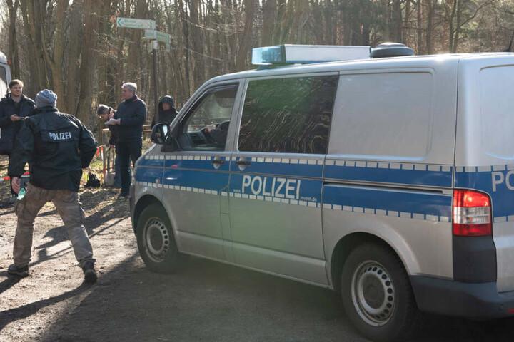 Ein Polizeifahrzeug fährt in ein Waldstück bei Storkow (Landkreids Oder Spree). Dort suchten Polizeibeamte erneut mit Spürhunden und einem Hubschrauber nach der vermissten Rebecca.