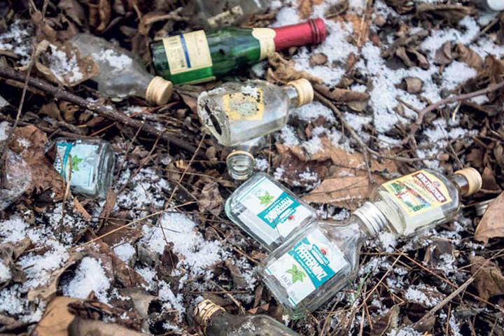 Kamenzer Flaschengrab: Immer wieder werfen die Saufkumpanen ihre leeren Pullen einfach ins Gebüsch.
