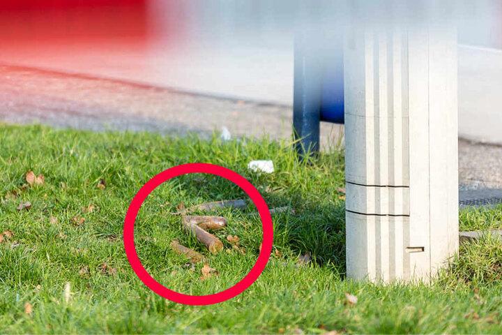 Die Stabgranaten lagen neben einem Mülleimer offen im Gras.