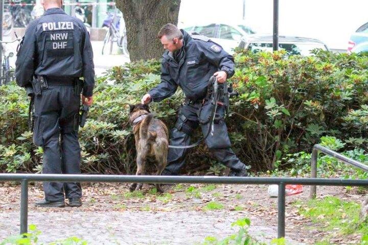 Mit einem Spürhund untersuchte die Polizei den Tatort in der Kölner Innenstadt.