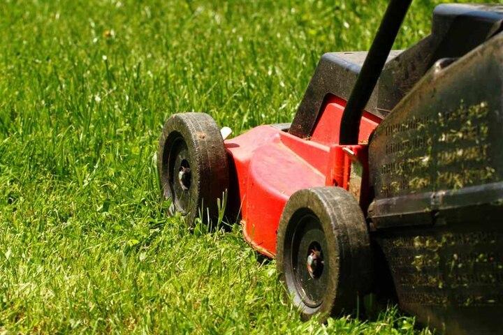 Am Ende war er an allem Schuld: Ein Rasenmäher. (Symbolbild)