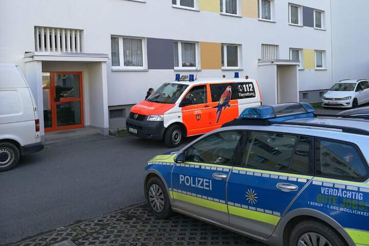 Die Polizei am Mittwoch in der Straße der Deutschen Einheit.