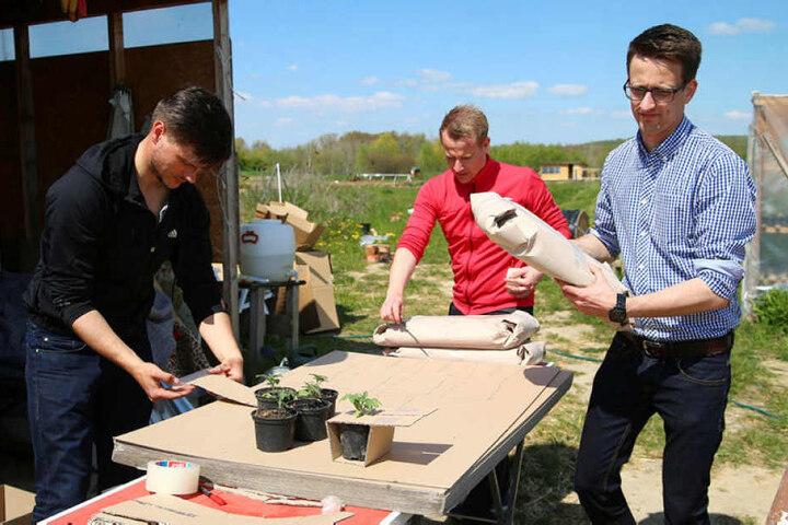 Philipp Munzert (28), Richard Hagedorn (30) und Tom Bauer (30) machen Euch zu Bio-Bauern.