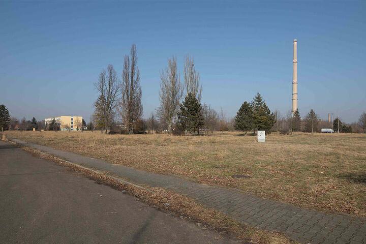Vom Wohnviertel zur Wiese: der Bergander-Ring heute.