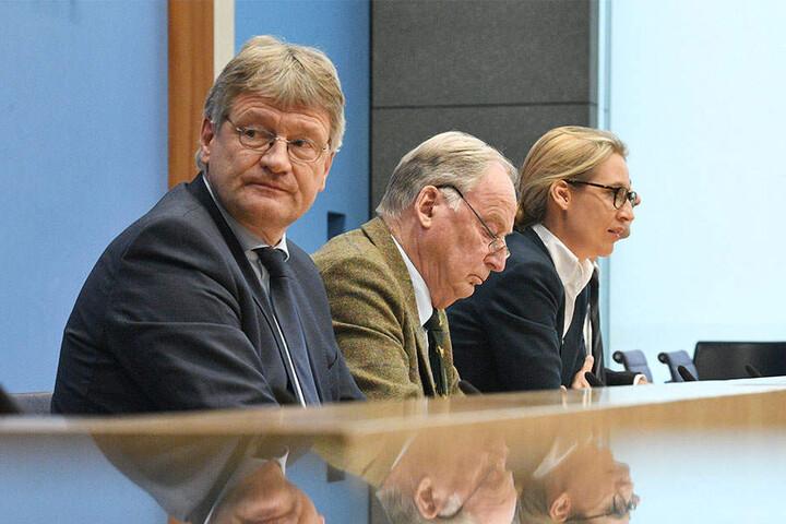 Die FDP legt keinen Wert, neben Jörg Meuthen, Alexander Gauland und Alice Weidel (v.l.n.r.) Platz zu nehmen.