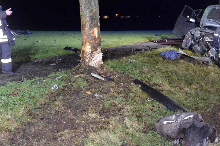 Auch an dem Baum sind die Spuren des Unfalls deutlich sichtbar.