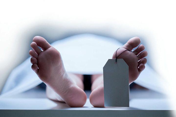 Bis zu drei Jahre können die Leichen am Institut lagern.
