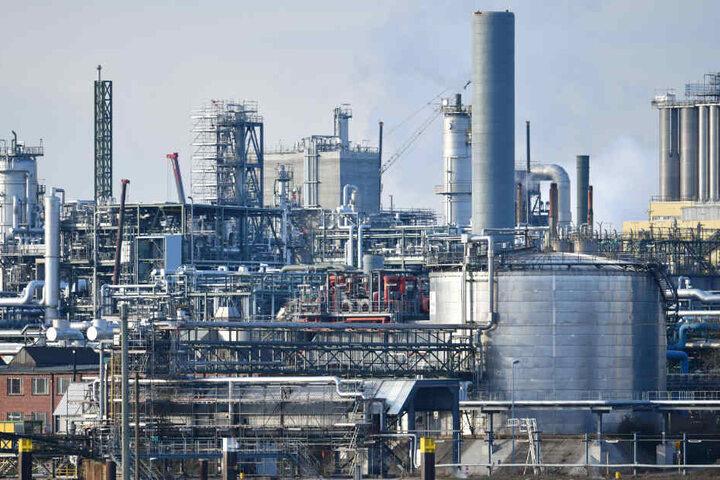 Industrienalagen des Chemiekonzerns BASF stehen am Rheinufer auf dem Werksgelände.