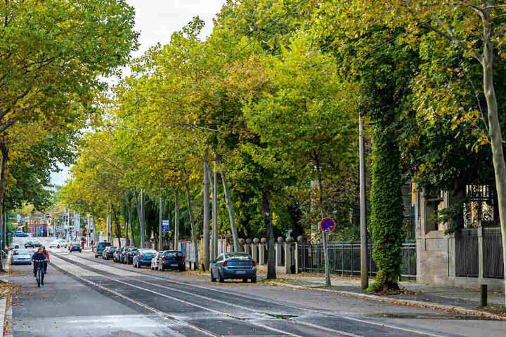 Die Sanierungsarbeiten an der Karl-Heine-Straße sind abgeschlossen.