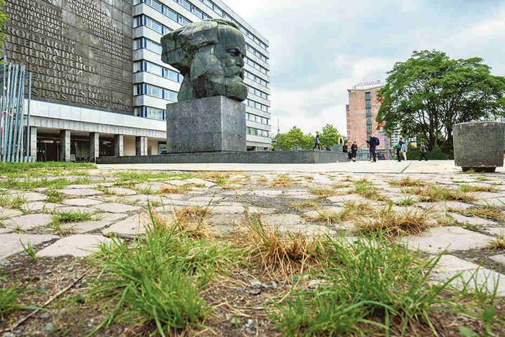Der Nischel, Wahr - zeichen von Chemnitz: Überall wuchert Gras und Unkraut.