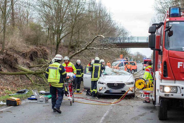 Die Feuerwehr musste den schwer verletzten Fahrer retten.