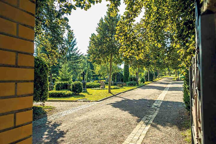 Die Fronten zwischen kirchlicher Verwaltung und Familie auf dem Friedhof  Cotta sind verhärtet.