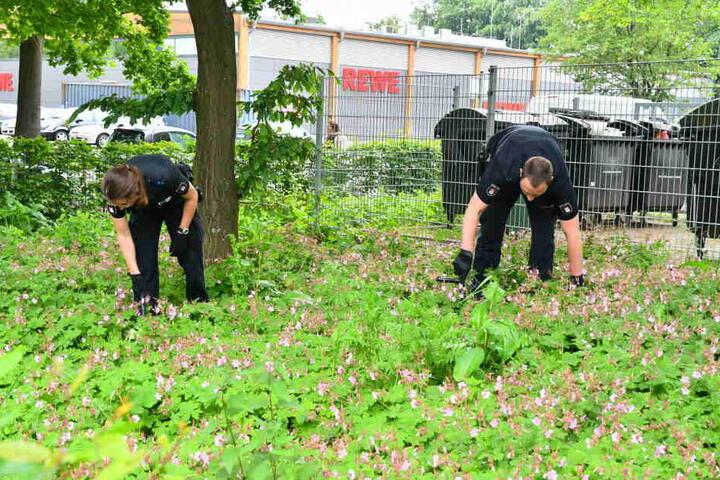 Polizeibeamte suchen in der Umgebung nach Spuren.
