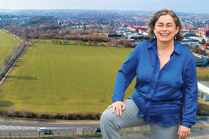 Der Blick von der Bergstraße in Richtung Westendring zeigt die ungefähren Ausmaße des neuen Südparkes. Eva Jähnigen (52, Grüne) ist als Umweltbürgermeisterin für den Südpark zuständig.